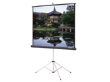 Da-Lite 8x8 Tripod Screen